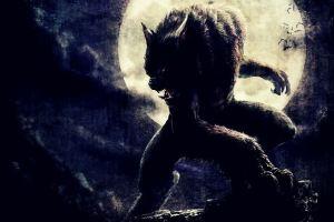 cycleofthewolf